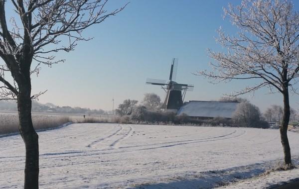 Mühle mit Blick nach Groß-Holum
